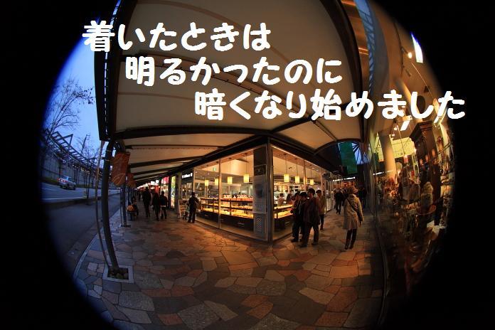 IMG_03852010.jpg