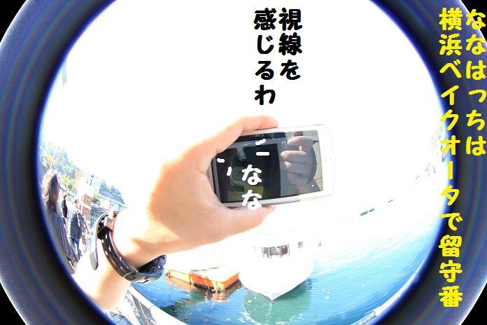 IMG_10012010.jpg