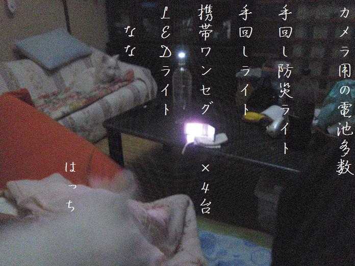 IMG_18462010.jpg