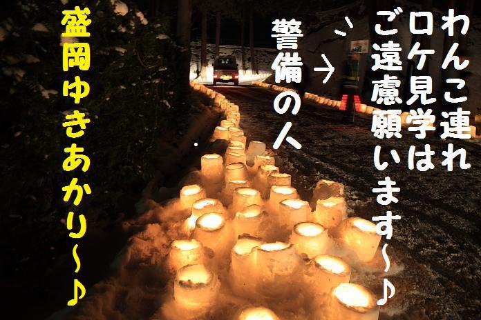 IMG_40482010-1.jpg