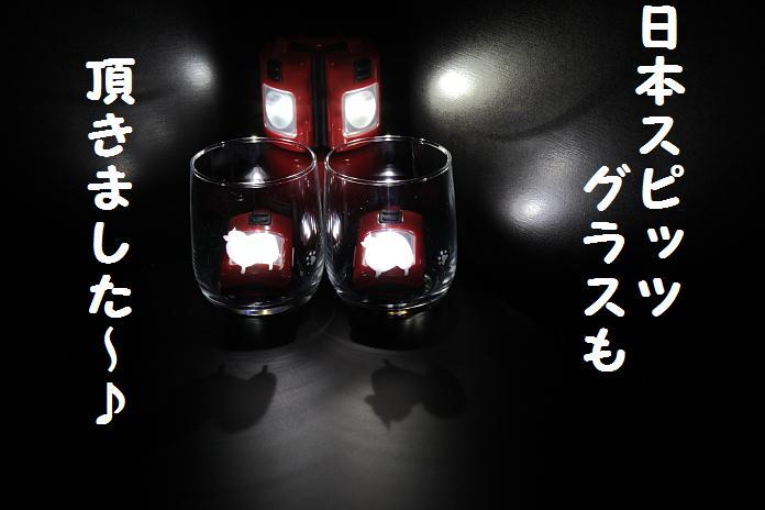 IMG_52652010.jpg