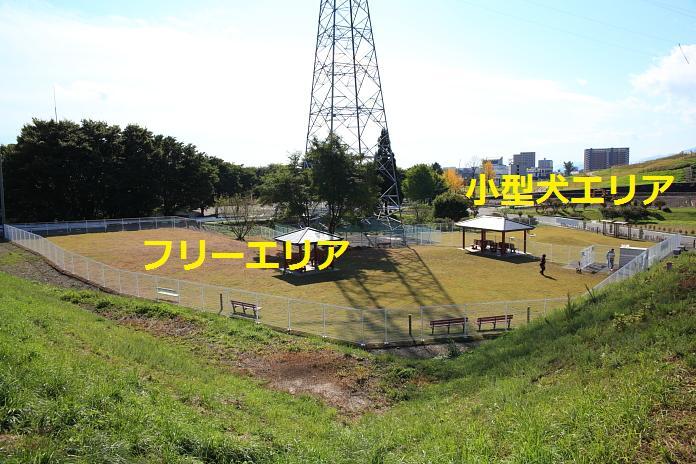 IMG_89512010.jpg