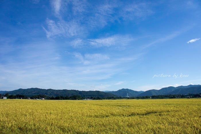 201209azu-ta1.jpg