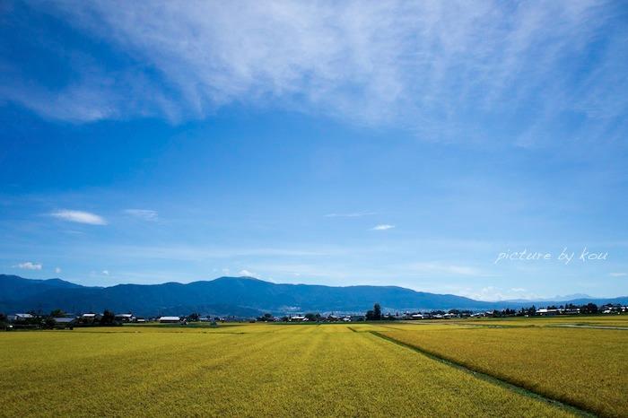 201209azu-ta2.jpg