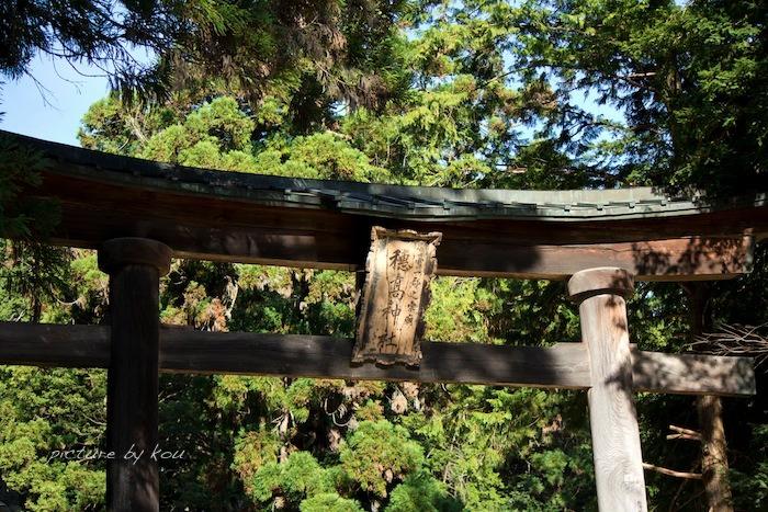 201209hoda-ji3.jpg
