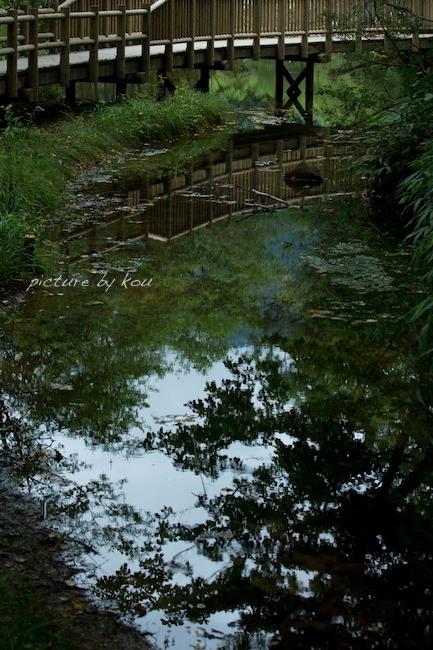 201209tai-ka1.jpg