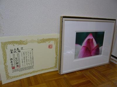 P1050156.jpg