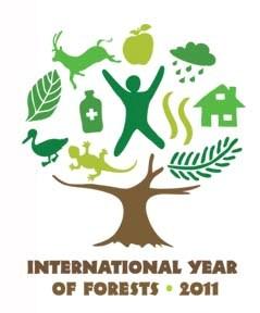 国際森林年