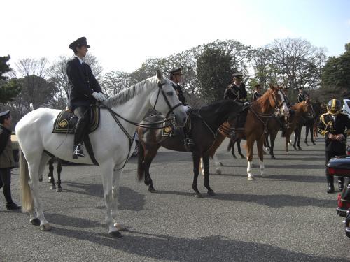 皇宮警察 騎馬隊