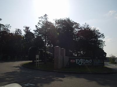 s-DSCN3449.jpg