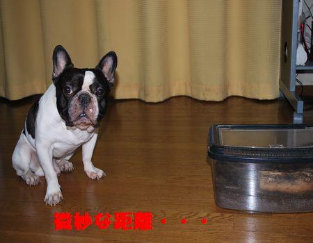 DSC_0027_20100709144620.jpg
