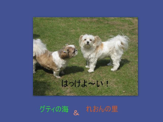 2010_09_201_convert_20100925110921.jpg