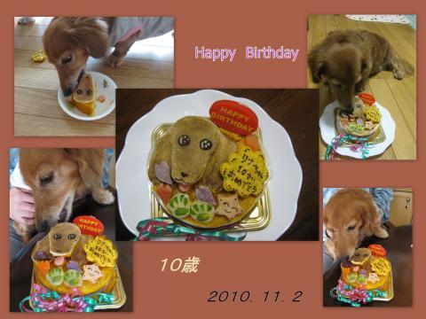2010_11_01_convert_20101105202157.jpg