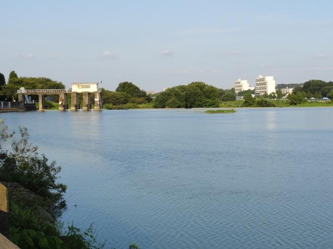 入間川 笹井ダム
