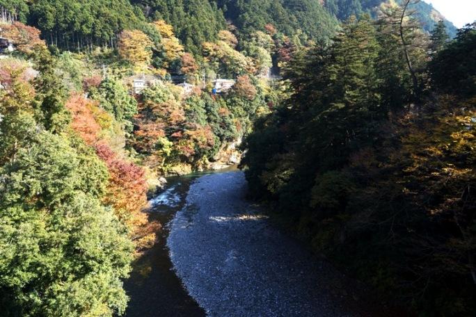 昭和橋からもえぎ橋方面多摩川20131117A