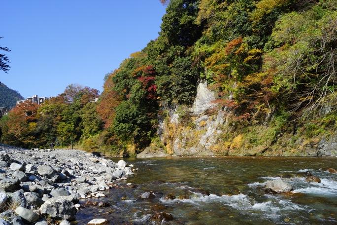 もえぎ橋付近多摩川より20131117A