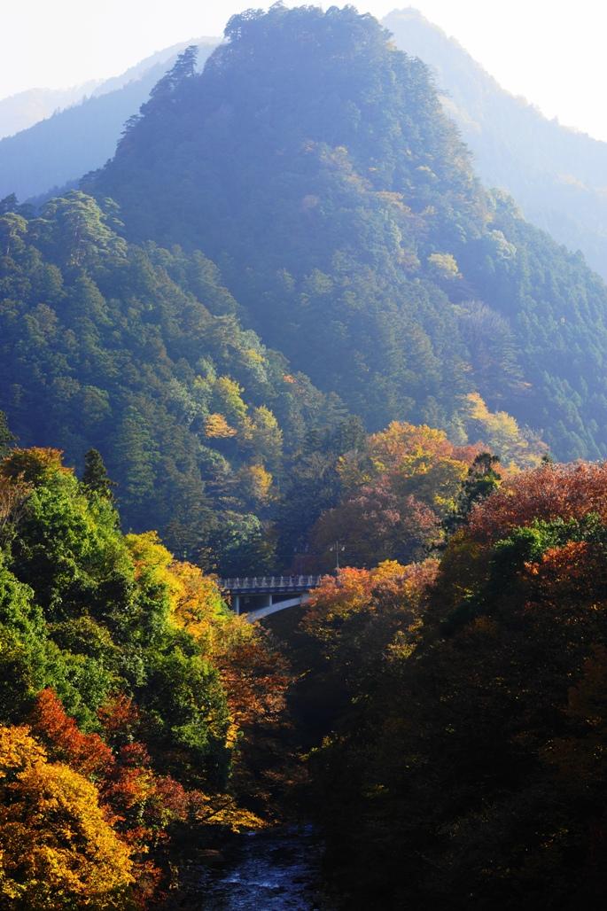 北氷川橋から愛宕山&氷川大橋を望むB20131117A