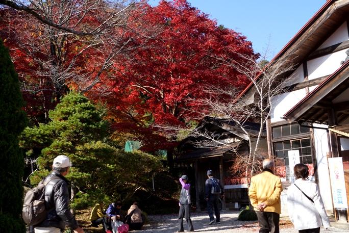 秩父東郷神社-写真展館 20131124A