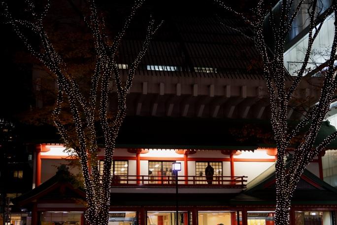 表参道  イルミネーション2013-11A