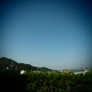 PA080089.jpg