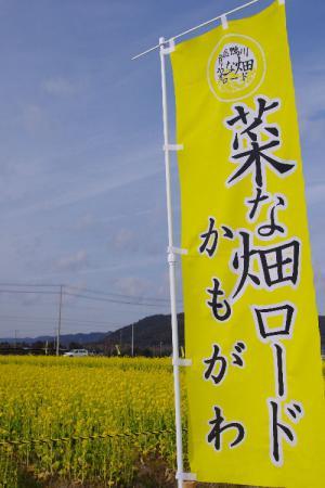 菜な畑ロード