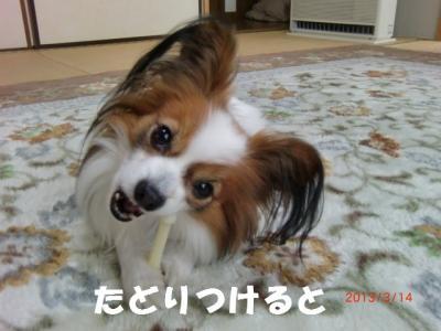 017_convert_20130319214408.jpg