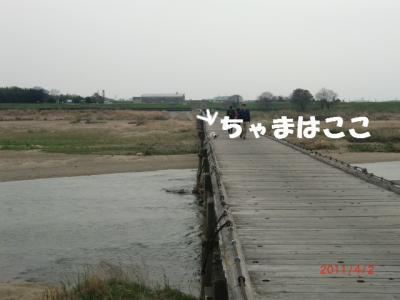 019_convert_20110408212046.jpg