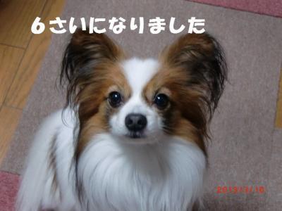 023_convert_20130310212550.jpg