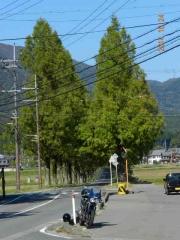 1024 奥琵琶湖 016