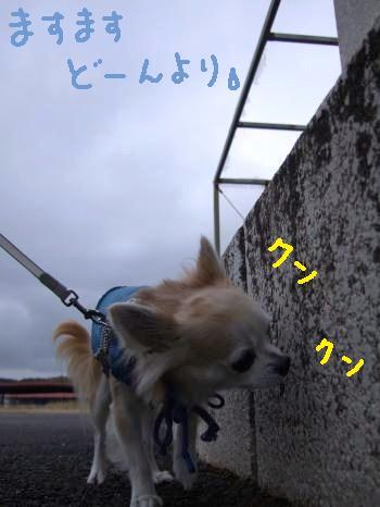 2011_01022011蟷エ・第怦2譌・0004_convert_20110103112733