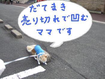2011_01022011蟷エ・第怦2譌・0001_convert_20110103112520