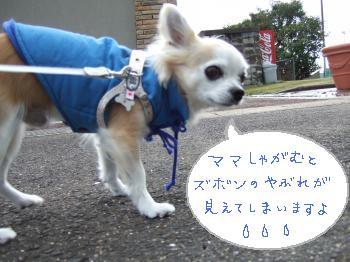 2011_01022011蟷エ・第怦2譌・0002_convert_20110103112604