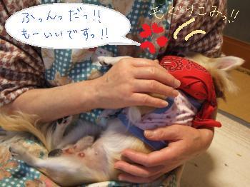 2011_01142011蟷エ・第怦14譌・0006_convert_20110115131022