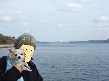 2011_0121京崎・田助釣り0003_convert_20110121220035