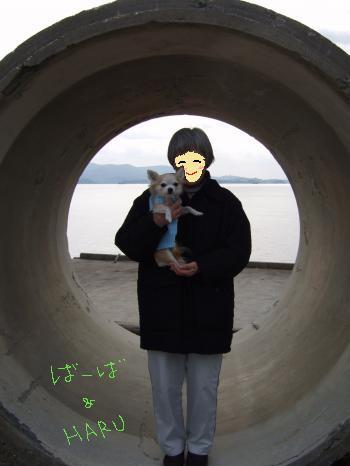 2011_0121京崎・田助釣り0005_convert_20110121220158