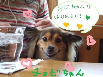 2011_0123美味しい菓子と新年会0018_convert_20110124100343