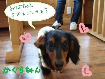 2011_0123美味しい菓子と新年会0017_convert_20110124100219