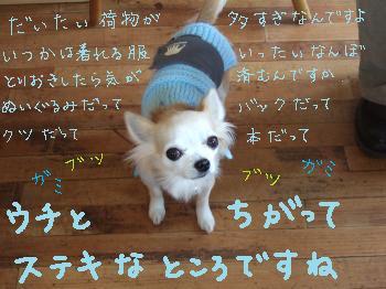 2011_0123美味しい菓子と新年会0007_convert_20110124085137