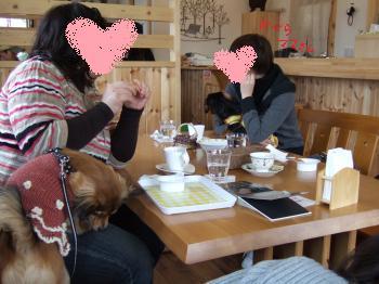 2011_0123美味しい菓子と新年会0056_convert_20110124104034