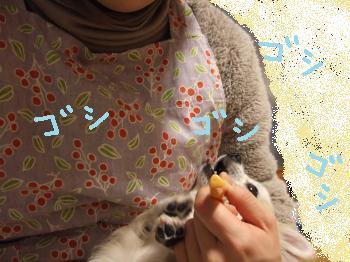 2011_0123美味しい菓子と新年会0005_convert_20110124213655