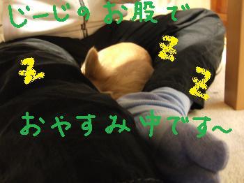 2011_01271月の日常0001_convert_20110128213734