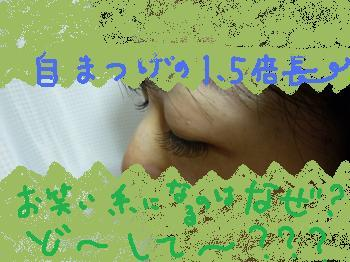 P1010513_convert_20111217104051.jpg