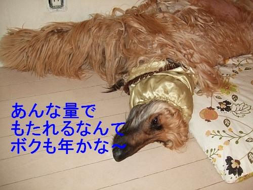 PO20110524_0017_1.jpg