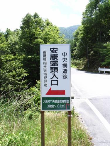 ohshika3.jpg