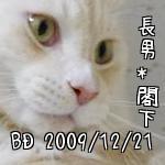 5fsy5aFD9XxT_QA.jpg