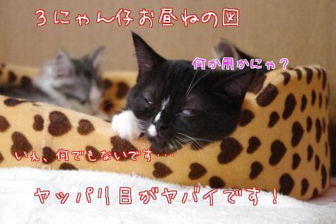 g_BEa.jpg