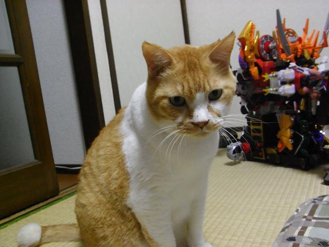 ブログ用 シンケンジャ-009