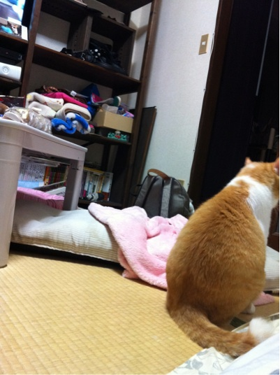 iphone_20111025200009.jpg