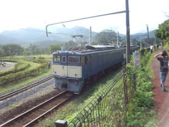 FJ310076.jpg