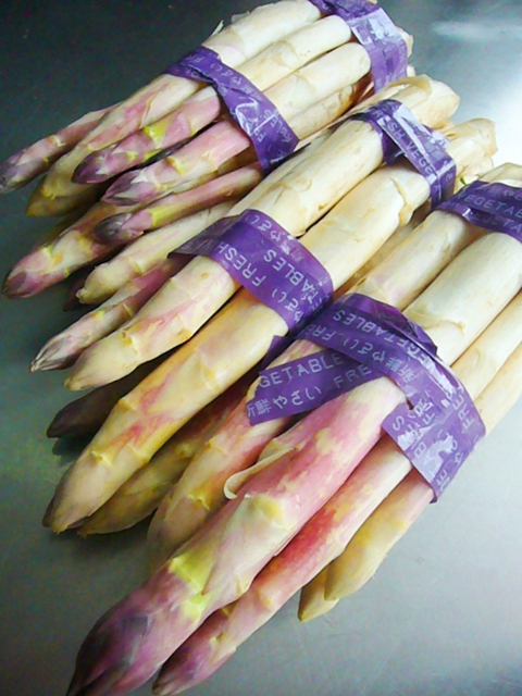 asperges blanche1